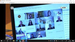 Screenshot von der Ausschussanhörung vom 17.5.2021